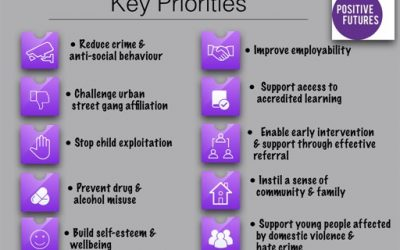 Positive Futures Priorities 2017