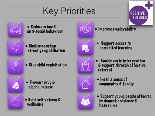 Positive Futures Priorities 2017