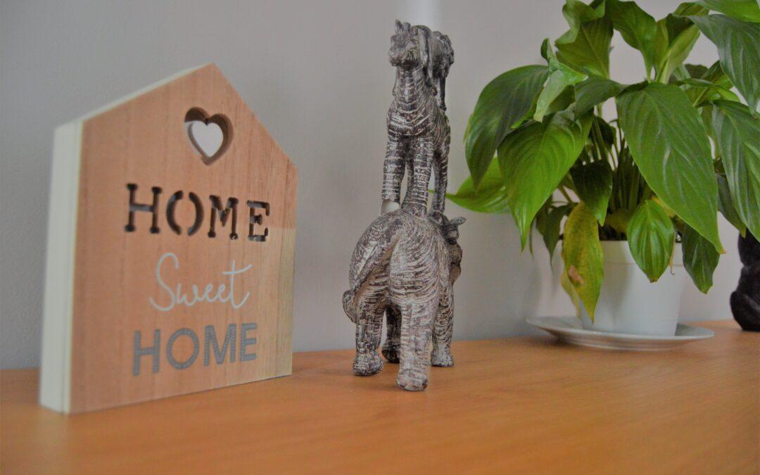 Positive Futures Homes Opens Its Doors